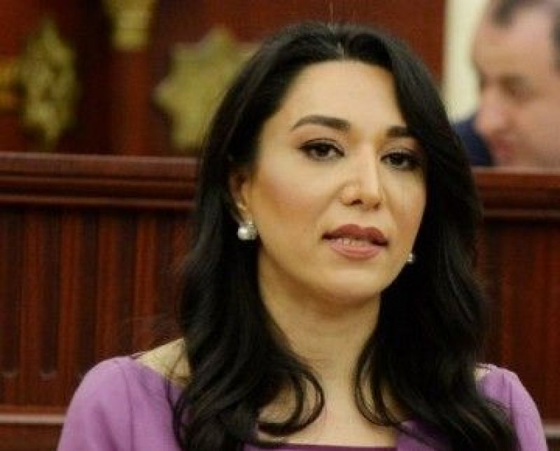 Ombudswoman forwarded a report on torture of Azerbaijani military to international structures