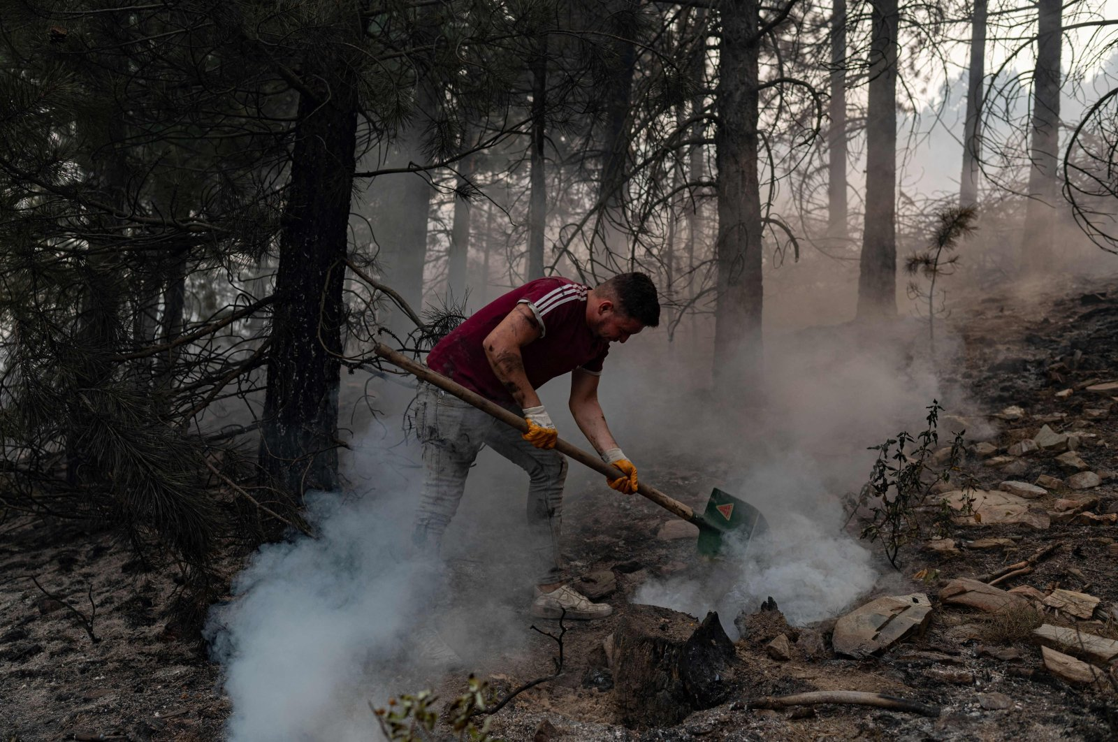 Lessons learnt from Turkey's forest fires