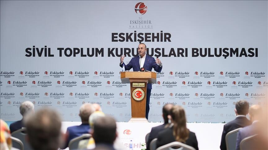 Ankara not refraining from taking action in Syria, Libya, E Med: FM